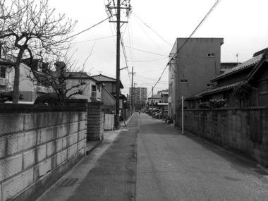 安城・特殊カフエ新桝家