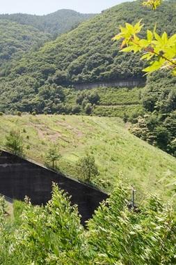奈良井ダム・のり面