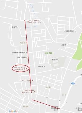 梅ヶ枝遊郭・タヌキ小路